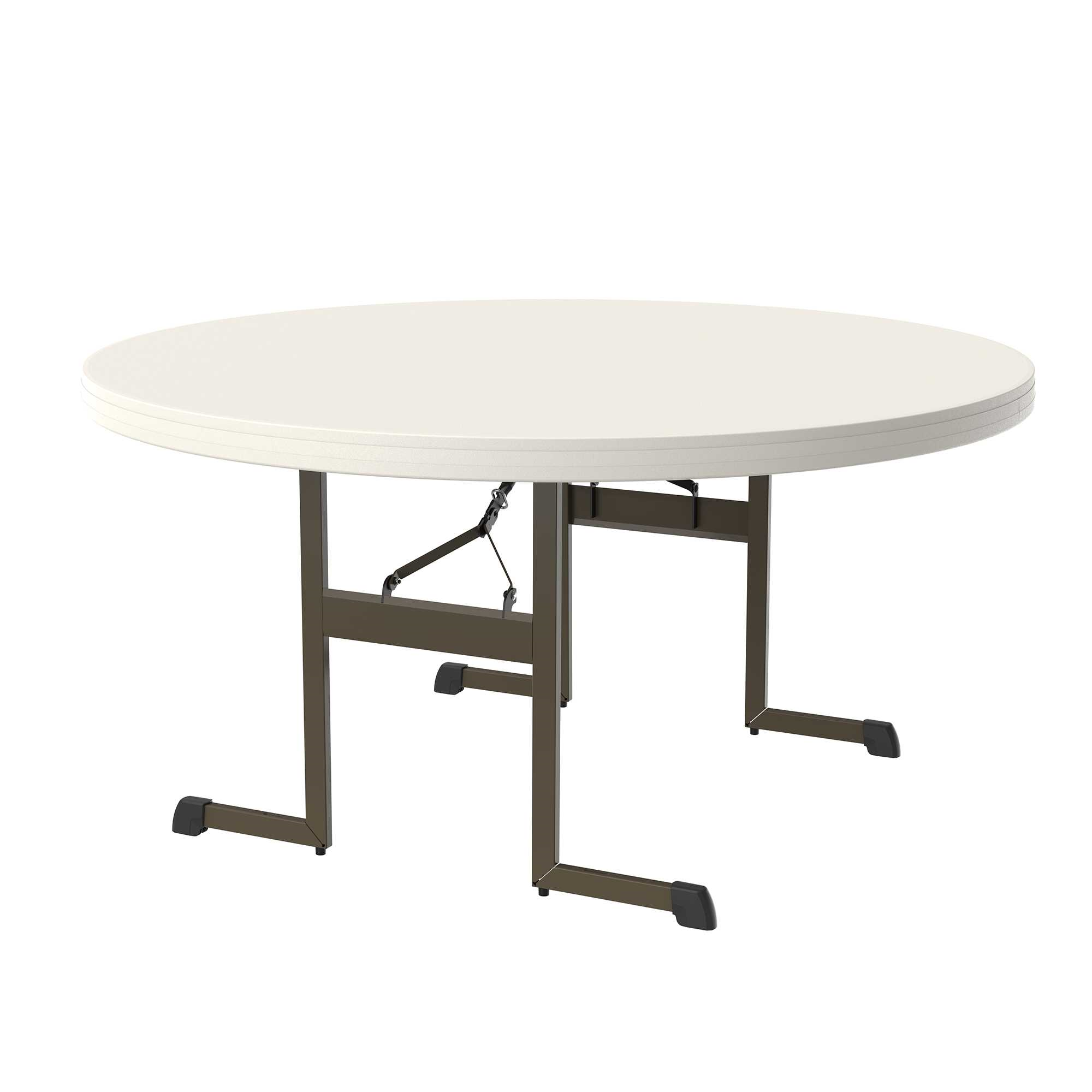 Lifetime 60-Inch Round Table (Professional)