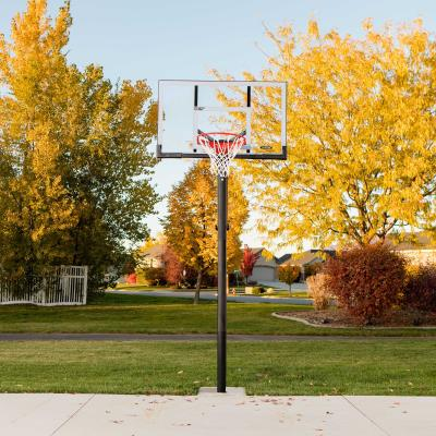 Lifetime Adjustable In-Ground Basketball Hoop (54-Inch Polycarbonate) photo