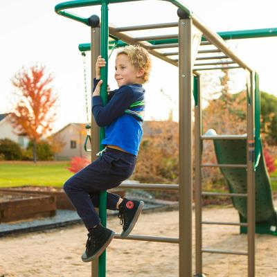 Lifetime Monkey Bar Adventure Swing Set (Earthtone) photo