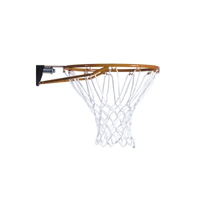 Lifetime Adjustable Portable Basketball Hoop (54-Inch Polycarbonate) photo