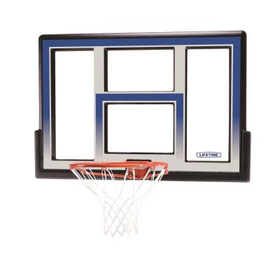 Lifetime Basketball Backboard and Rim Combo (48-Inch Polycarbonate) photo